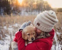 Dog-Nanny